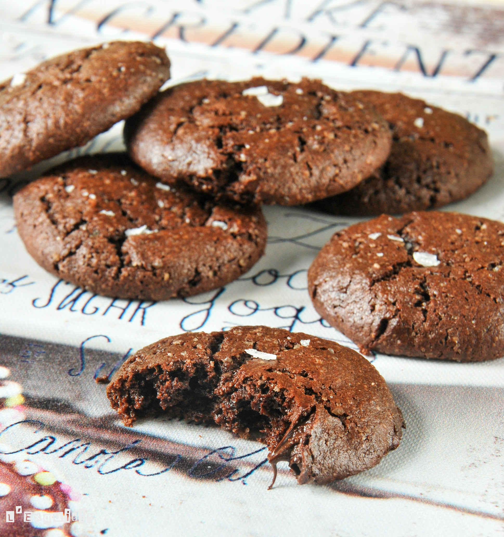 Galletas de chocolate {sin gluten ni lactosa}