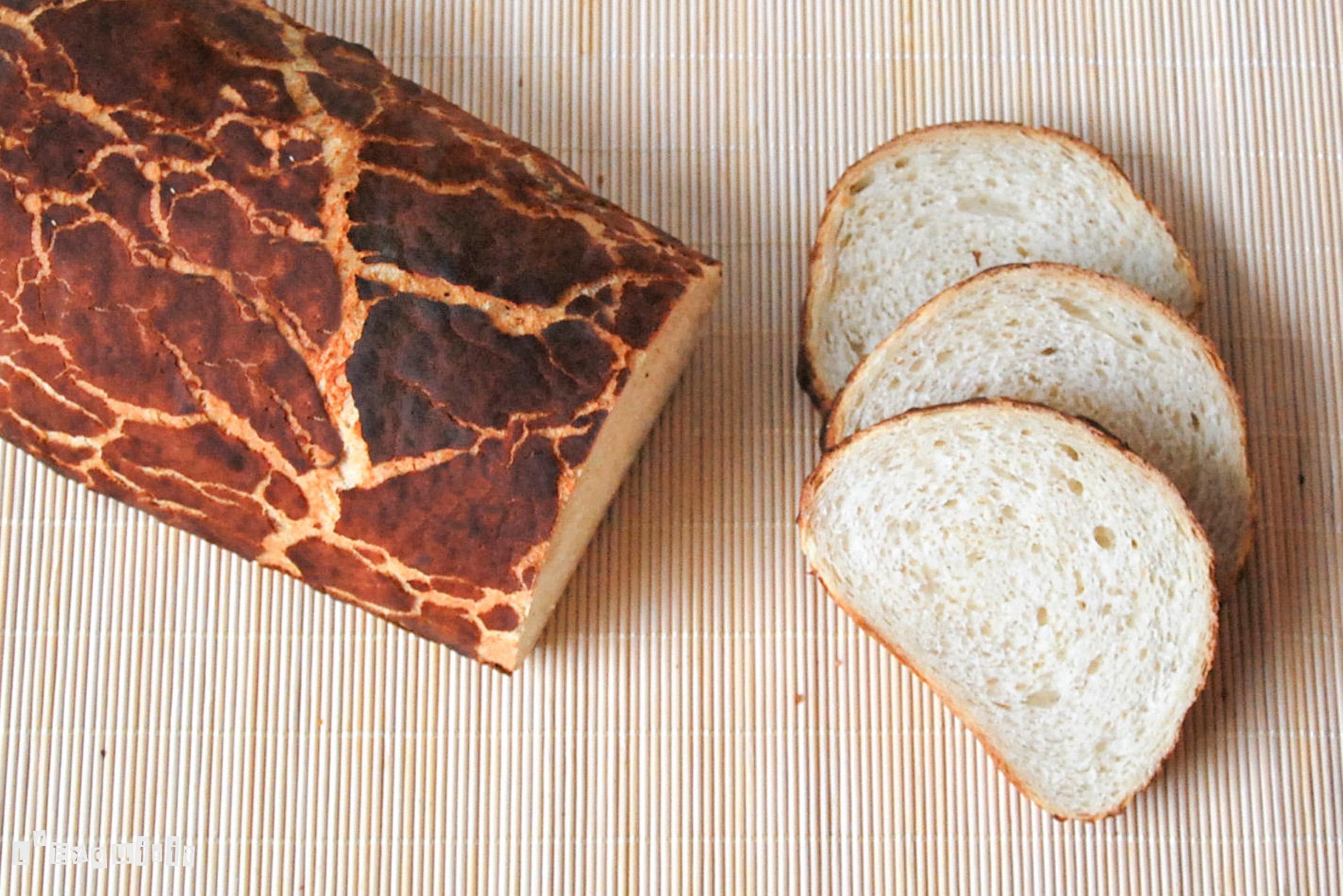 Pan de tigre3-2